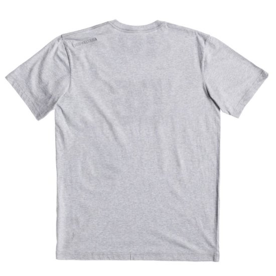 DC shoes Star SS T-Shirt grey S