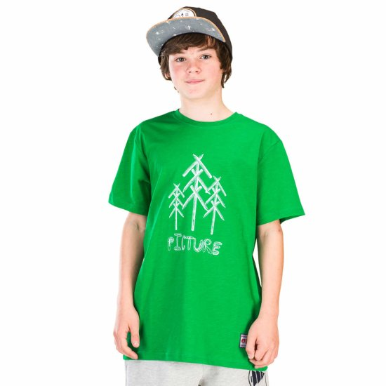 Picture Organic Draw Tshirt - green 12
